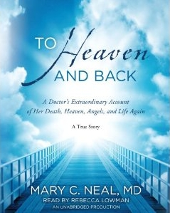 Image result for heaven NDE